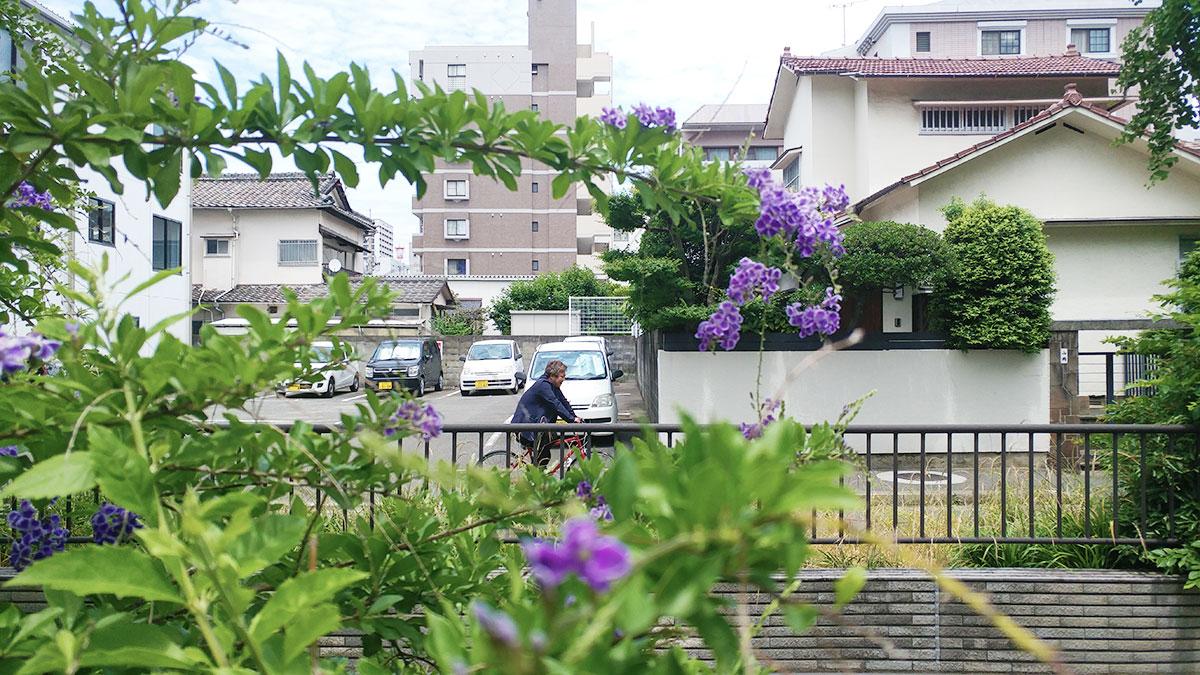 毎日自転車で通勤